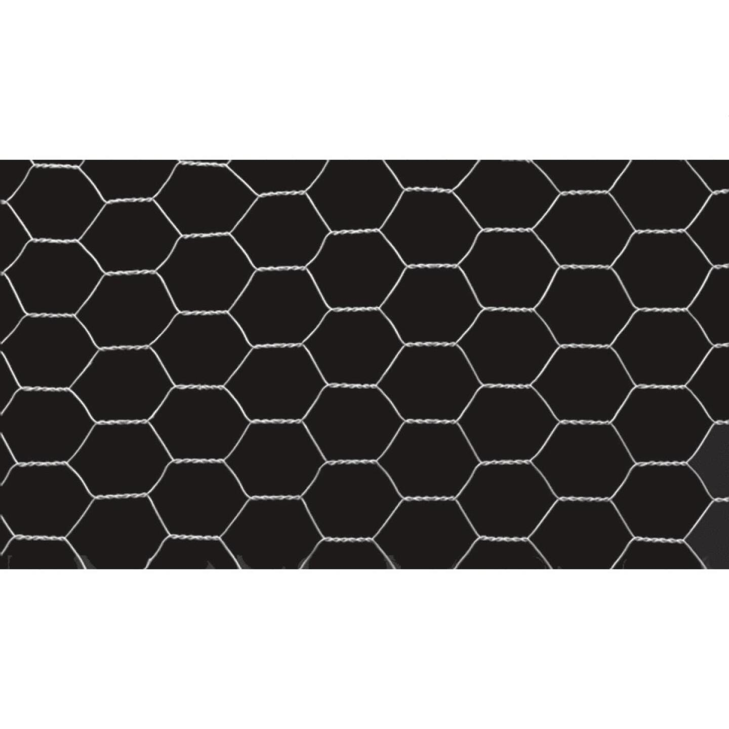 Do it 2 In. x 48 In. H. x 150 Ft. L. Hexagonal Wire Poultry Netting Image 2